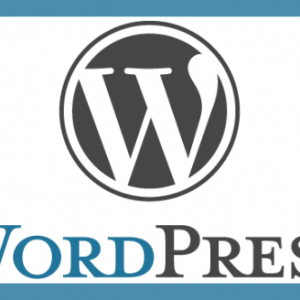 Wordpress Monthly Maintenance Program image